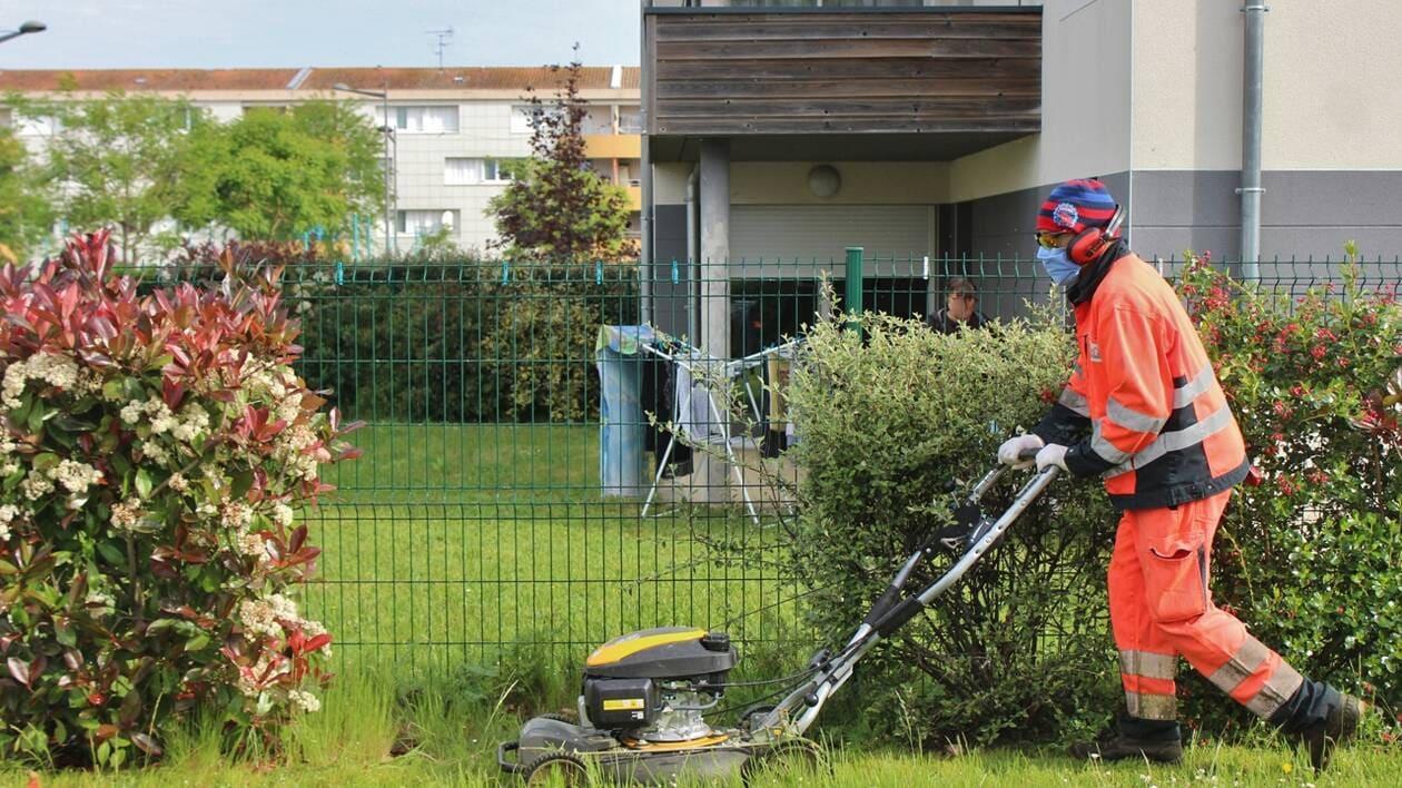 «Cholet. Aux pieds des immeubles, la Régie de quartier Actif est de retour sur le terrain»